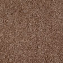 Shaw Floors Zipp Plus Buckskin 00151_Q3883