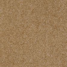 Shaw Floors Zipp Plus Acorn 00170_Q3883