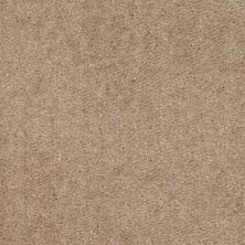 Shaw Floors Zipp Plus Pebble 00753_Q3883