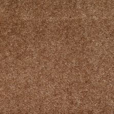 Shaw Floors Zipp Plus Toffee 00763_Q3883