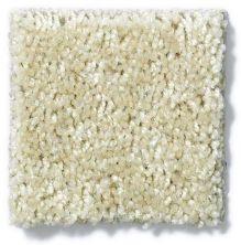 Shaw Floors Energize Sand Pebble 00105_Q3884