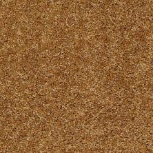 Shaw Floors Energize Regal Gold 00202_Q3884