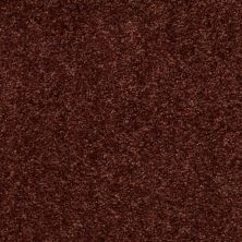Shaw Floors Energize Aged Copper 00600_Q3884