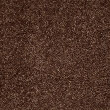 Shaw Floors Energize Fresh Coffee 00704_Q3884