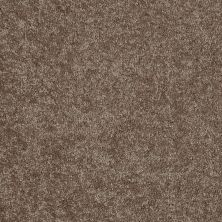 Shaw Floors Queen Solitude II 15′ Owl 00791_Q3955