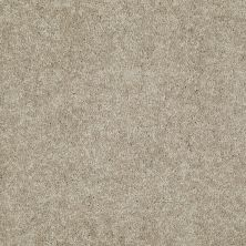 Shaw Floors Queen Solitude II 15′ Field Khaki 00793_Q3955