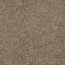 Shaw Floors Flourish Desert Palm 00301_Q4206