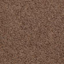 Shaw Floors Flourish Brown Sugar 00702_Q4206