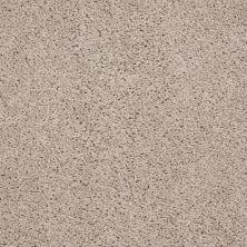 Shaw Floors Queen Thrive Soft Shell 00103_Q4207