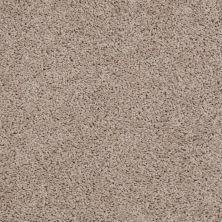 Shaw Floors Queen Thrive Birch Bark 00107_Q4207