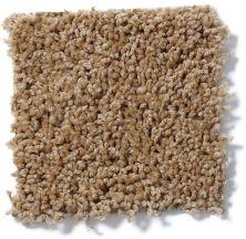Shaw Floors Queen Thrive Dried Oak 00201_Q4207