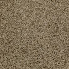 Shaw Floors Queen Thrive Desert Palm 00301_Q4207