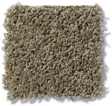 Shaw Floors Queen Thrive Desert Palm 00301_Q4207