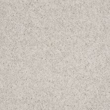 Shaw Floors Queen Thrive Crystal Gray 00500_Q4207