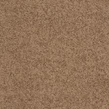 Shaw Floors Queen Thrive Brown Sugar 00702_Q4207