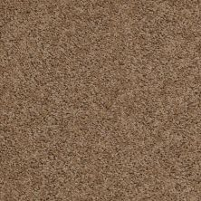 Shaw Floors Anso Premier Dealer Harvest Antique 00203_Q4230