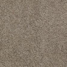 Shaw Floors Anso Premier Dealer Harvest River Rock 00300_Q4230