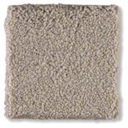 Shaw Floors Sandy Hollow I 12′ Mountain Mist 00103_Q4273
