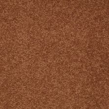 Shaw Floors Sandy Hollow I 12′ Dark Amber 00602_Q4273