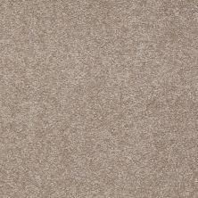 Shaw Floors Queen Sandy Hollow I 15′ Chinchilla 00306_Q4274