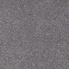 Shaw Floors Queen Sandy Hollow I 15′ Slate 00502_Q4274
