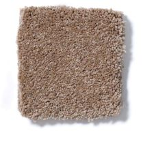Shaw Floors Queen Sandy Hollow I 15′ Muffin 00700_Q4274