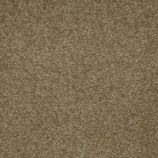 Shaw Floors Queen Sandy Hollow II 12′ Green Tea 00302_Q4275