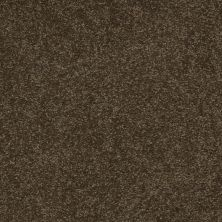 Shaw Floors Queen Sandy Hollow II 12′ Tropic Vine 00304_Q4275