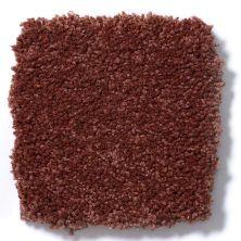 Shaw Floors Queen Sandy Hollow II 12′ Spanish Tile 00601_Q4275