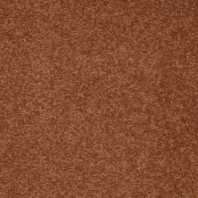Shaw Floors Sandy Hollow III 15′ Dark Amber 00602_Q4278