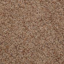 Shaw Floors Adrian Cedar 00768_Q4280