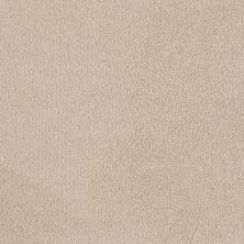 Shaw Floors SFA Timeless Appeal I 12′ Mushroom 00101_Q4310