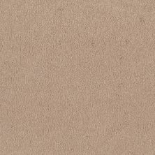 Shaw Floors SFA Timeless Appeal I 12′ Cashew 00106_Q4310