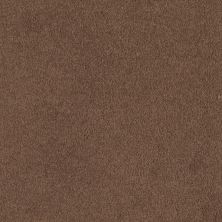 Shaw Floors SFA Timeless Appeal I 12′ Tuscany 00204_Q4310