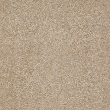 Shaw Floors SFA Timeless Appeal I 12′ Sahara 00205_Q4310