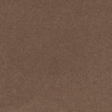 Shaw Floors SFA Timeless Appeal I 12′ Mojave 00301_Q4310