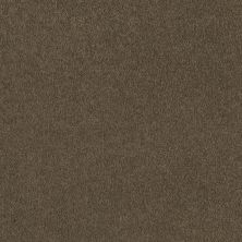 Shaw Floors SFA Timeless Appeal I 12′ Green Tea 00302_Q4310