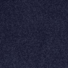 Shaw Floors SFA Timeless Appeal I 12′ Indigo 00404_Q4310