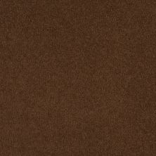 Shaw Floors SFA Timeless Appeal I 12′ Tortoise Shell 00707_Q4310