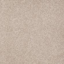 Shaw Floors SFA Timeless Appeal II 12′ Soft Shadow 00105_Q4312