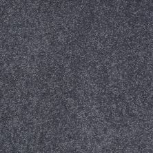 Shaw Floors SFA Timeless Appeal II 12′ Cadet 00401_Q4312