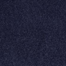 Shaw Floors SFA Timeless Appeal II 12′ Indigo 00404_Q4312