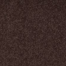 Shaw Floors SFA Timeless Appeal II 12′ Tundra 00708_Q4312