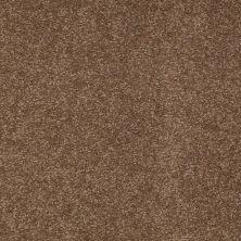 Shaw Floors SFA Timeless Appeal II 15′ Pine Cone 00703_Q4313