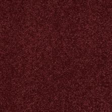 Shaw Floors SFA Timeless Appeal II 15′ Rutabaga 00801_Q4313