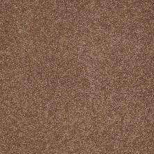 Shaw Floors SFA Timeless Appeal III 12′ Tuscany 00204_Q4314