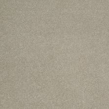 Shaw Floors SFA Timeless Appeal III 12′ London Fog 00501_Q4314