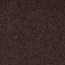 Shaw Floors SFA Timeless Appeal III 15′ Tundra 00708_Q4315