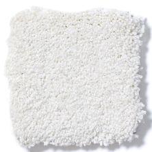 Shaw Floors Anso Premier Dealer Great Effect I 12′ Vanilla 00100_Q4327