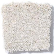 Shaw Floors Anso Premier Dealer Great Effect I 12′ Mushroom 00101_Q4327